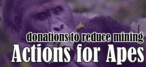 Action for Apes Electronics Drive on Now