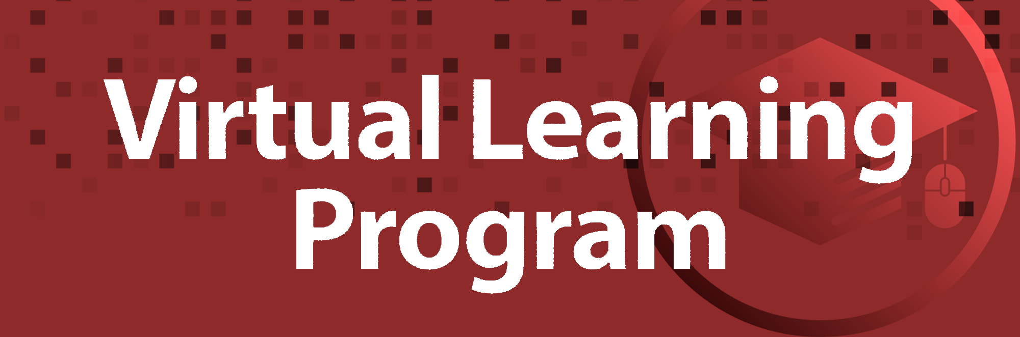 FBISD Virtual Learning Program