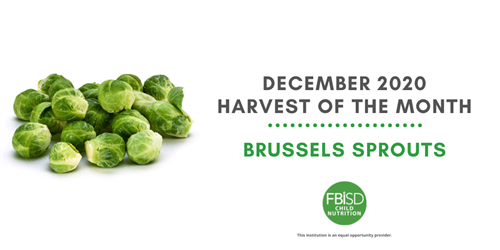 December HOM Brussels Sprouts