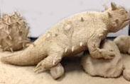 Shelby Bishop's Lizard